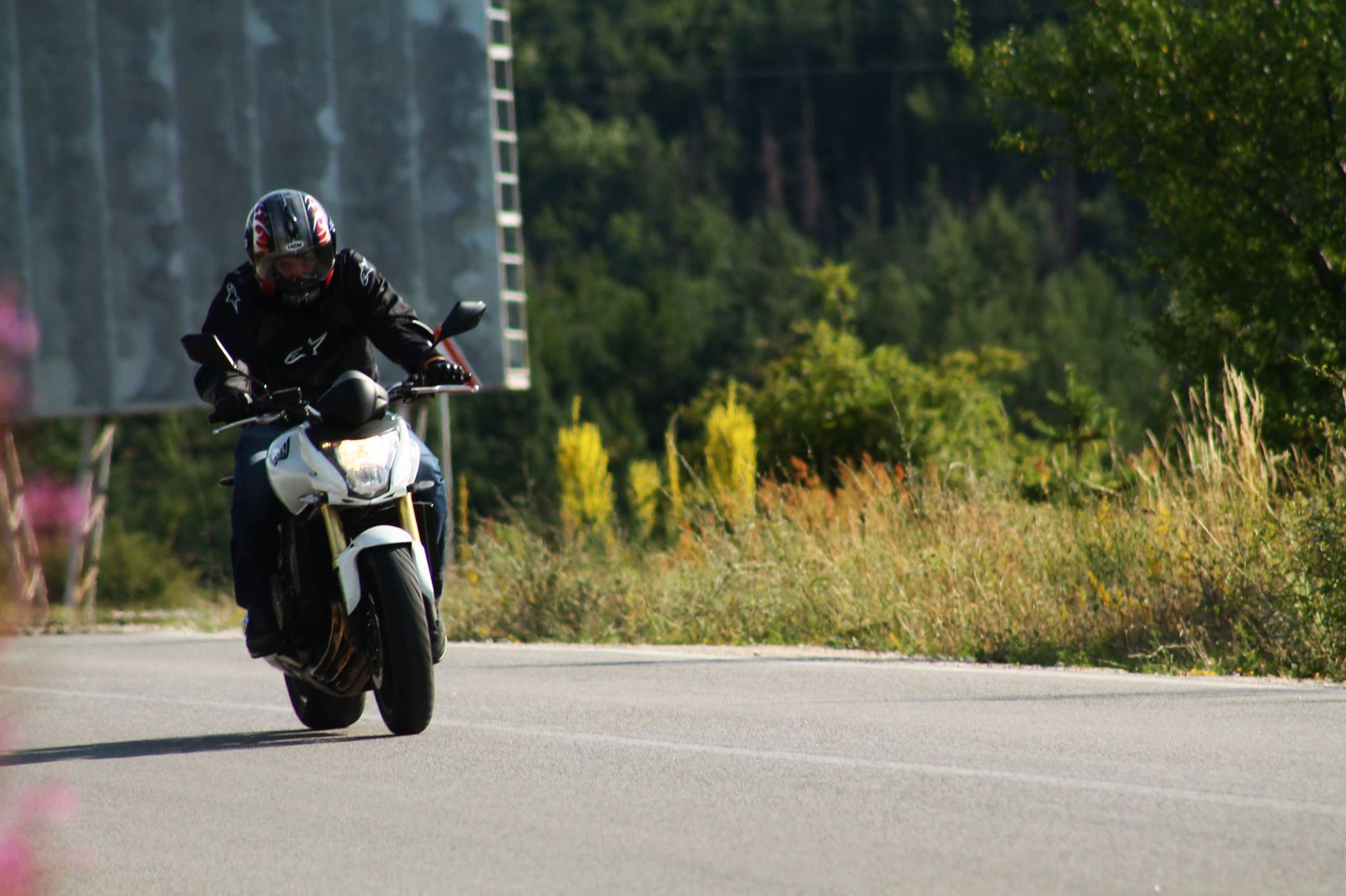 Honda Hornet Pavel Dzhunev